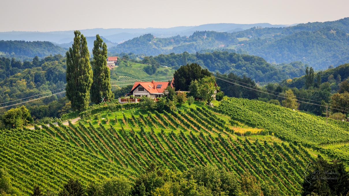 Glanz an der Weinstrasse