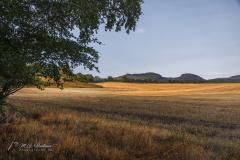 Landscape of Marybank - Scotland (UK)