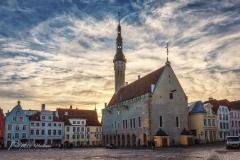 Het raadhuis (raekoda) - Raekoja plats - Raadhuisplein - Tallinn