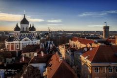 Uitzicht over Tallinn