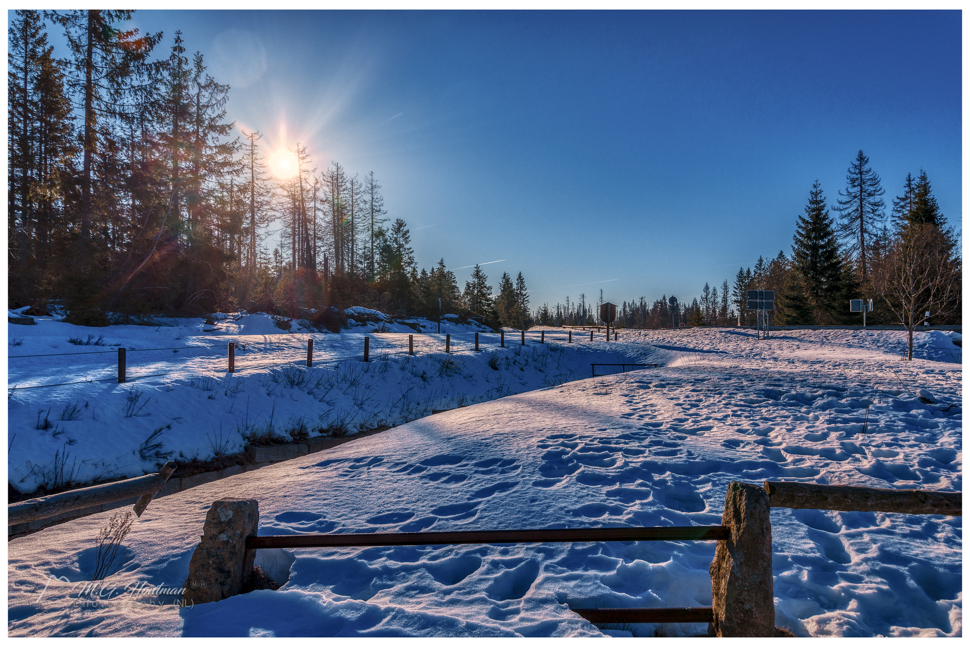 Winterwalk in the Harz