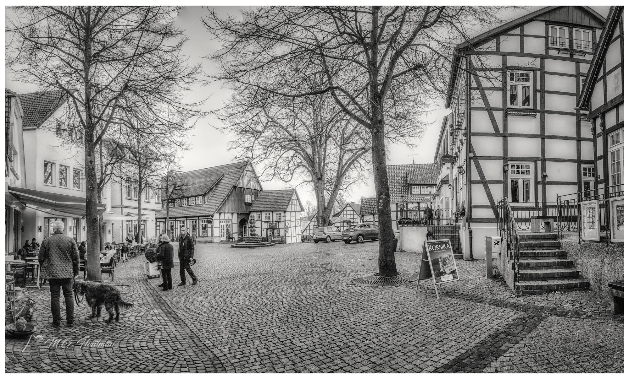 Altstadt Tecklenburg (D)