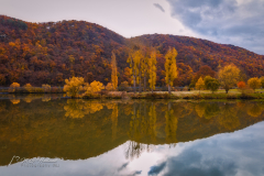 Autumn and awsome colors along the Moselle