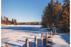 Sunny winterday at the lake