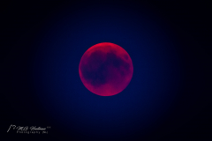 The total lunar eclipse - 27 July 2018