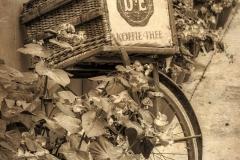 Oude DE-fiets