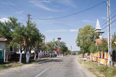 Brusturi, Roemenië