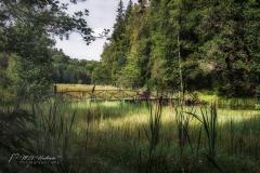 Pinnabron - Ryfors